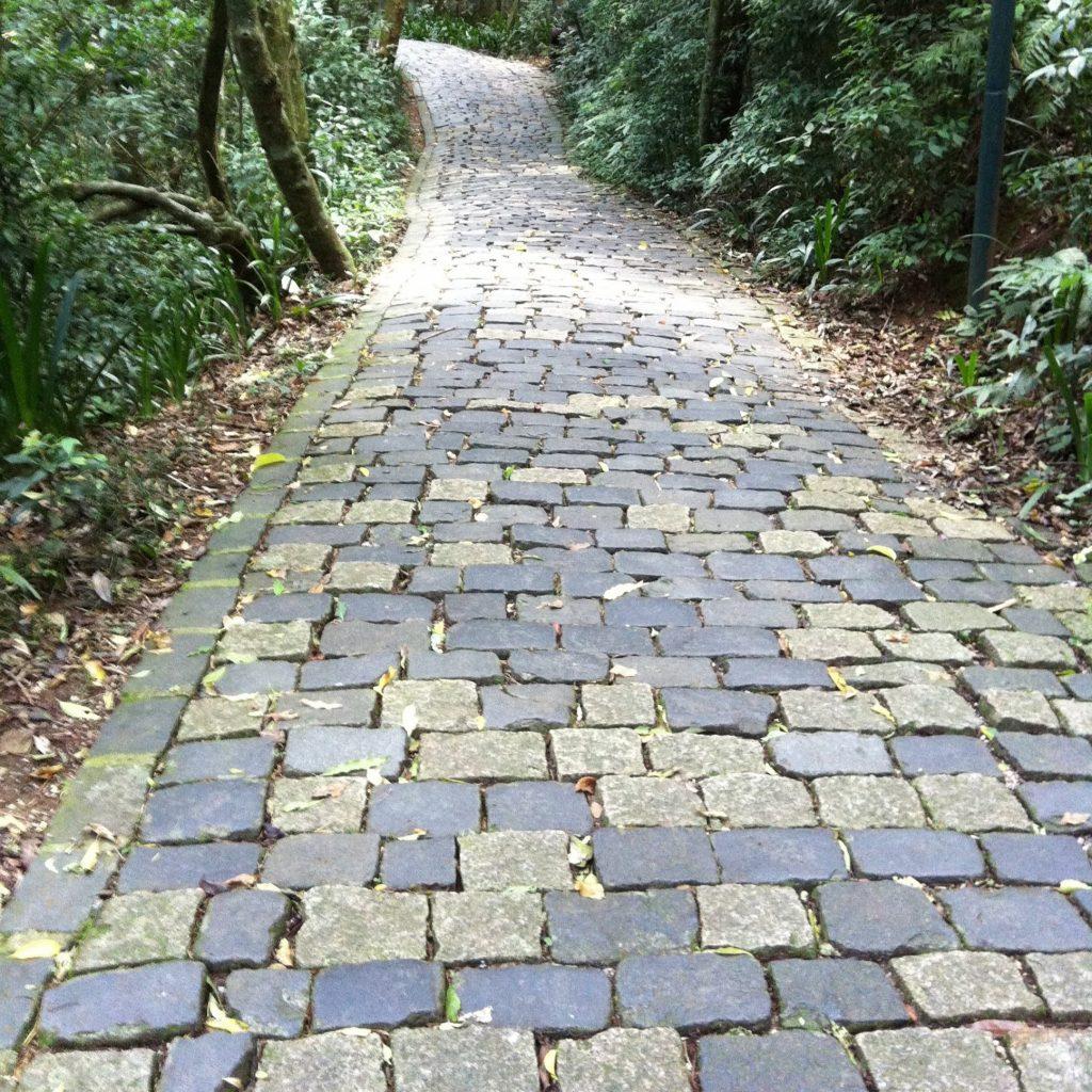 caminho aberto à frente mostrando que o Amandices continua aqui e vai seguir em frente